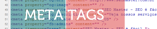 Topo_Meta_Tags