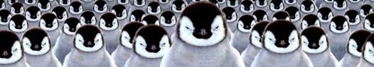 Google Penguin Update: hasta la vista Black Hat